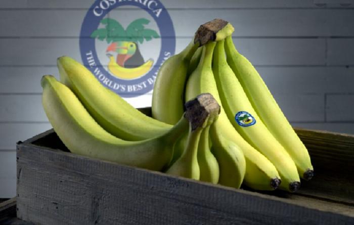 El Banano de Costa Rica logra sortear la pandemia
